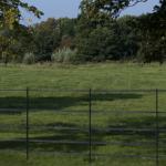 Estate Railings in Dorset created by Chris
